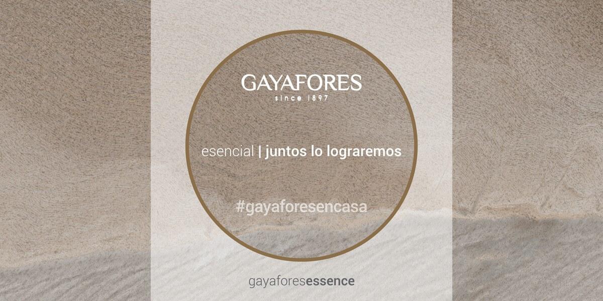 Gayafores slide web 2
