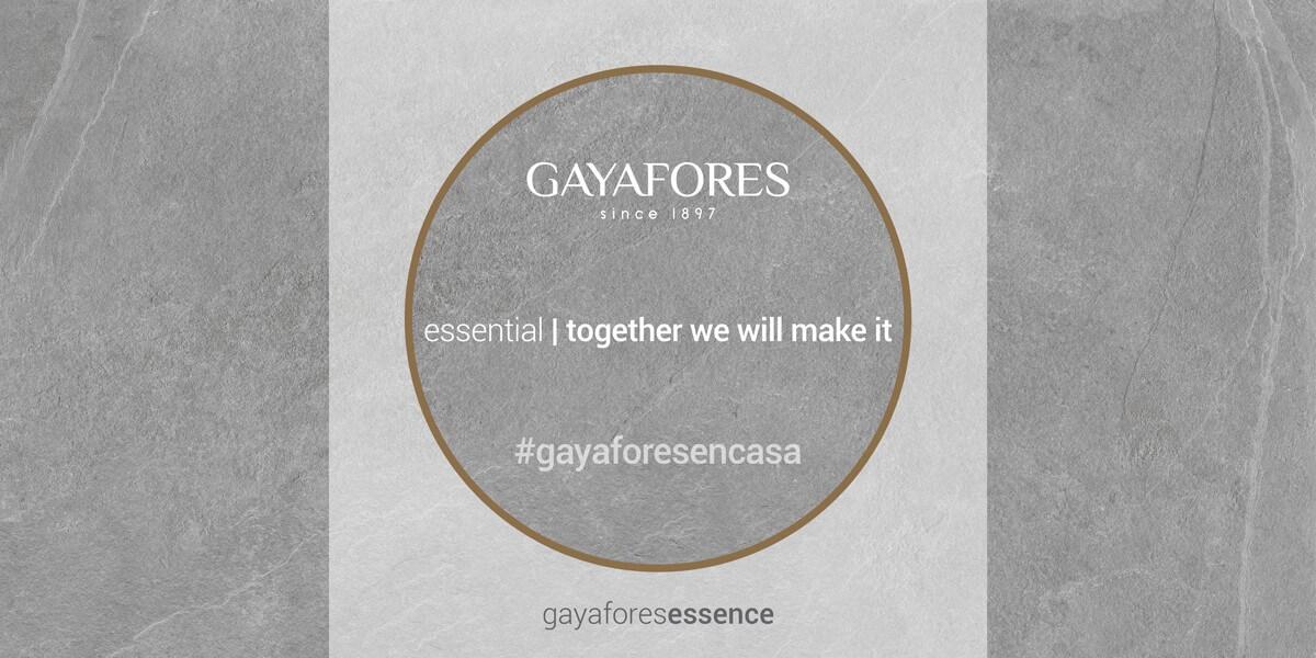 Gayafores slide web 4