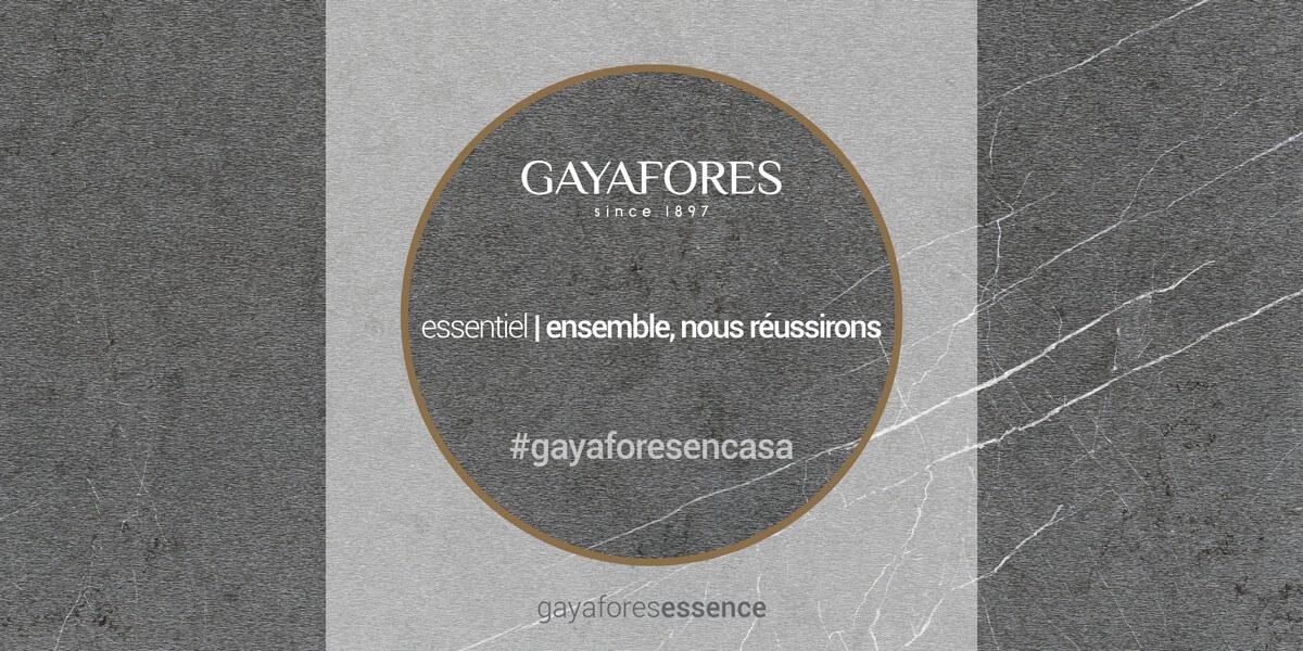 Gayafores slide web 6