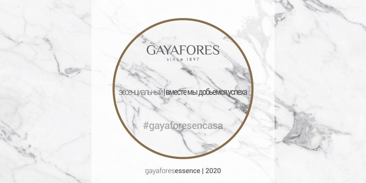 Gayafores slide web 8